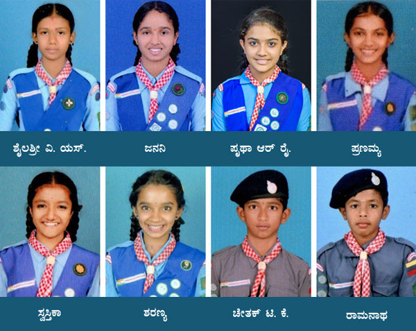 Scouts-State-award